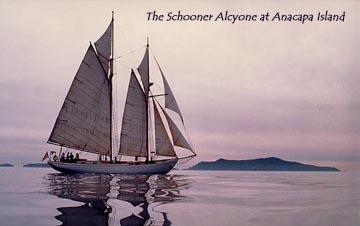 Schooner Alcyone